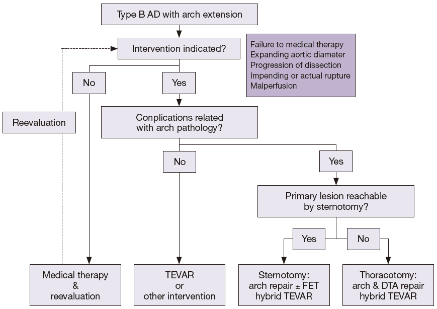 Best Surgical Option For Arch Extension Of Type B Aortic Dissection